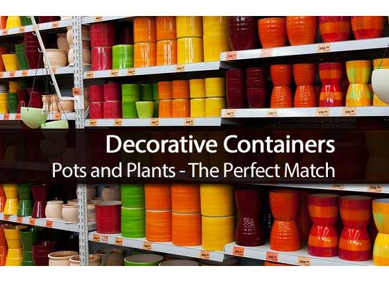 decorative-containers-101813